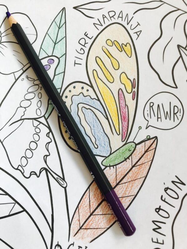 mural de mariposas para pintar