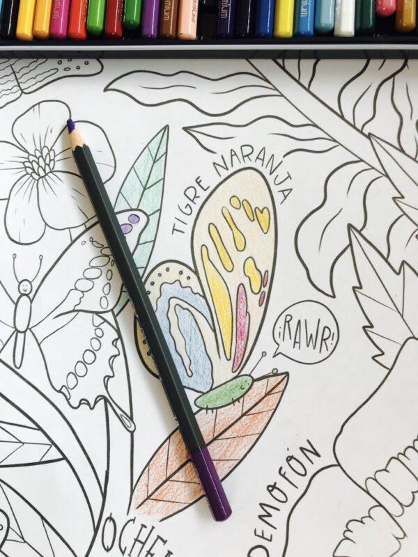 mural de mariposas para colorear