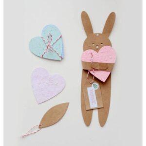 Pocket-Crea-tarjetas-plantables-jugamas-juguetes-didacticos